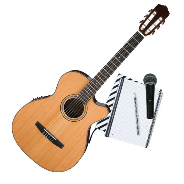 Singer & Songwriter